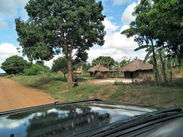 Village 2 X